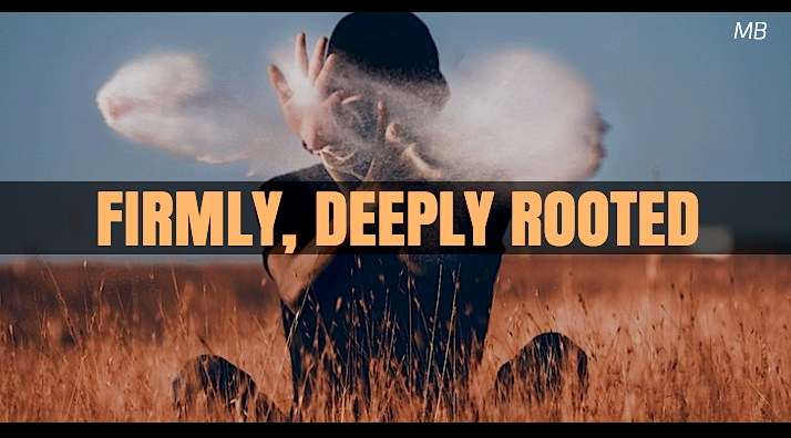 Firmly, Deeply Rooted