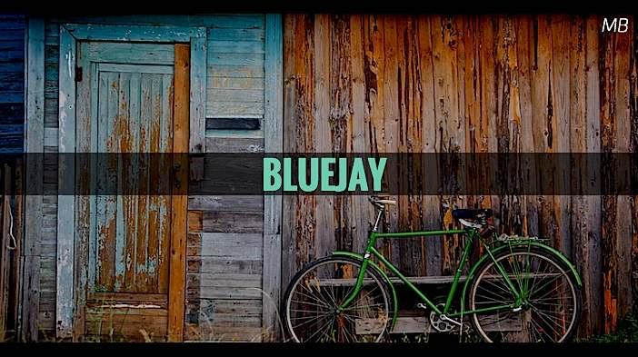 Bluejay Short Serio-comedy Script