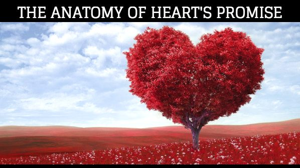 The Anatomy of Heart's Promise