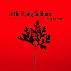 Little Flying Soldiers Playscript