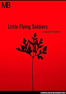 Little Flying Soldiers