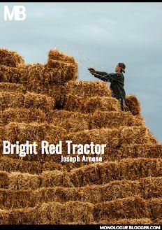 Bright Red Tractor by Joseph Arnone