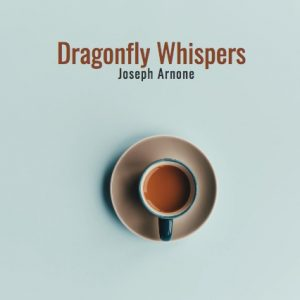 Dragonfly Whispers Play Script